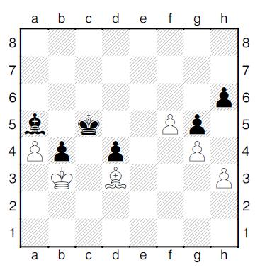 T2-Diagram11
