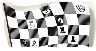 talv_flagg